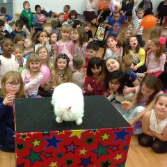 magic show for schools kids entertainer